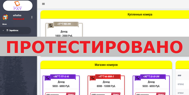 Сервис Number Pay с soosyni.xyz